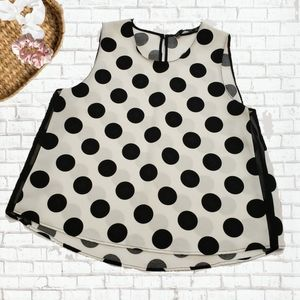 Zara Basic Polka Dot Blouse